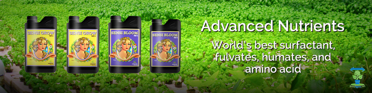 Advanced Nutrients Sensi Grow Sensi Bloom