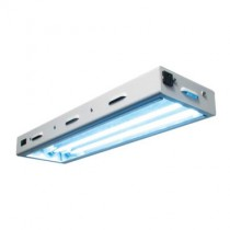 Sun Blaze T5 High Output 2 ft Long 2 Lamp System