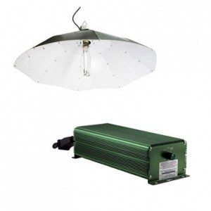 600w Digital 4 ft. White Parabolic