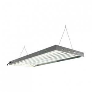 Sun Blaze VHO T5 4 ft Long 8 Lamp Fluorescent System