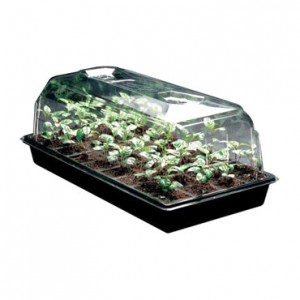 6 in. Propagation Dome