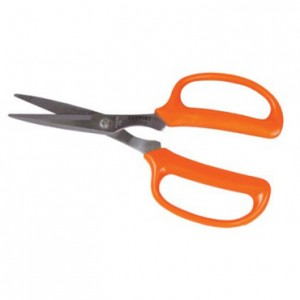 7 in Stainless Scissors