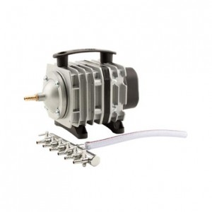 EcoPlus Commercial Air 3 Pump