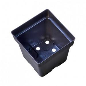"""10 Plastic Pots 5.5"""" X 5.5"""" X 5.75"""""""